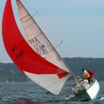 Genepy in regata